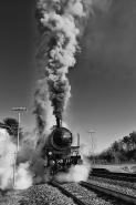 """""""I tempi in cui si cominciava la guerra santa dei pezzenti: sembrava il treno anch'esso un mito di progresso, lanciato sopra ai continenti."""" (Francesco Guccini)   [img]http://www.micromosso.com/immagini/staff.jpg[/img]"""