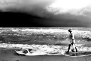 [img]http://www.micromosso.com/immagini/staff.jpg[/img]  lido di Spina, oasi protetta, luglio  (quel nero è poco prima di una tromba marina...)  perdonate la latitanza mm...tornerò:)  (fullscreen)