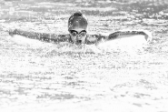 Troppo tempo senza nuoto mi è impossibile . . .     chiedo scusa della latitanza per cause (fortunatamente) di forza maggiore.