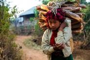 Myanmar </p> <p>[img]http://www.micromosso.com/immagini/staff.jpg[/img]