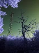 Full Spectrum Camera FIltro seppia  [img]http://www.micromosso.com/immagini/staff.jpg[/img]