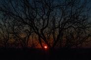 Il cielo tèrso di inizio gennaio ci ha regalato tramonti meravigliosi sull'orizzonte romano