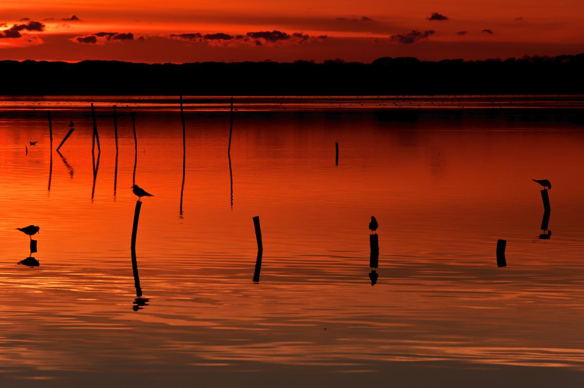2013, last sunset