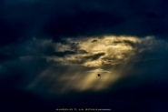 [img]http://www.micromosso.com/immagini/staff.jpg[/img]</p> <p>In occasione del decennale della scomparsa di Angelo D&#39;Arrigo è stata effettuata una esibizione di deltaplani nei luoghi dove viveva e lavorava l&#39;aviatore. Purtroppo il piovoso tempo atmosferico di quel giorno non permetteva di volare in condizioni di sicurezza ma in uno squarcio tra le nubi, in un momento di pausa della pioggia, uno dei velivoli coinvolti ha potuto alzarsi in volo ed esibirsi. Fortuna volle che sia passato sotto quello squarcio tra i raggi di sole che trapelavano e io ne ho approfittato...